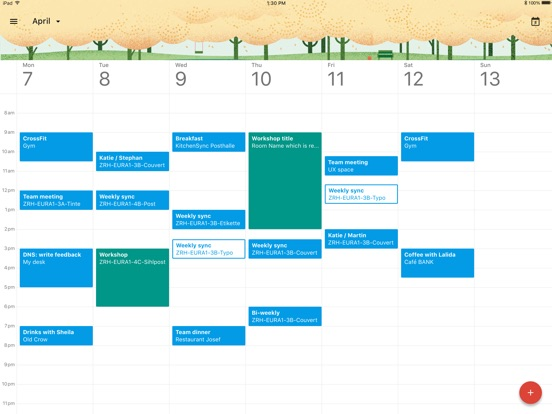 Google Calendar Screenshots
