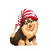 Daniel Thomas - Christmas Elf Dogs  artwork