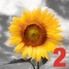 iSplash 2 Burst of Color Photo Editor Professionelle Colorizing & einfärben Werkzeug