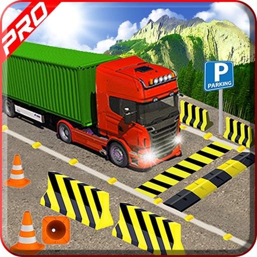 Monster Truck Parking Skills