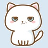 Cat Animated Expression