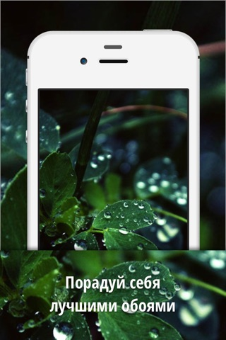 Live Wallpaper - HD Background screenshot 1