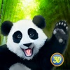 Panda Family Simulator game free for iPhone/iPad