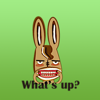 Cute Donkey Stickers Wiki