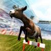 You Goat It! . Crazy Fun Race
