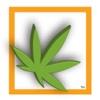420 Social for iPad
