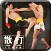 散打专业版-格斗拳王动作教学