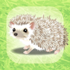 Hiroki Yamada - 癒しのハリネズミ育成ゲーム アートワーク