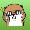 Funny Groundhog Stickers Pack message