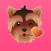 Megataps.com LLC - YorkieMojis - Emojis for Yorkshire Lovers!  artwork