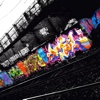 Graffiti Glossary-Study Guide and Terms