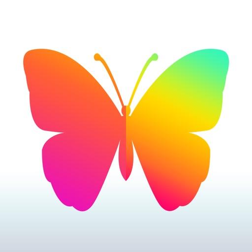 花镜-文艺娱乐平台