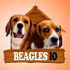 Beagles IO (Opoly)