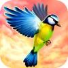 Vogel Fliegen 3D - Vogelperspektive