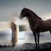 Unicorn Photo Frame - Best Photo Frame Editor