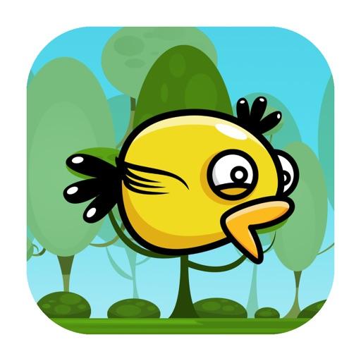 Duck Flyer iOS App