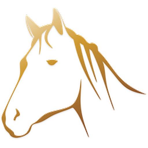 Лошадь наклейка обновления!
