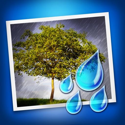 情雨蒙蒙:Rainy Daze【图像处理】