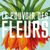 Pierre-Joseph Redouté, the power of flowers