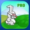 Bunny Scape Pro