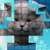 PicPu - Cat Picture Puzzle game for iPhone/iPad