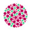 Color Blind Test - Test your eyes