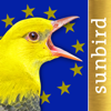 BIRD SONGS Europe, North Africa + Middle East
