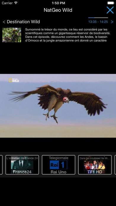 IPTV Streamer Pro Screenshots