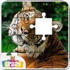 Real Animal Puzzles Game-Kids
