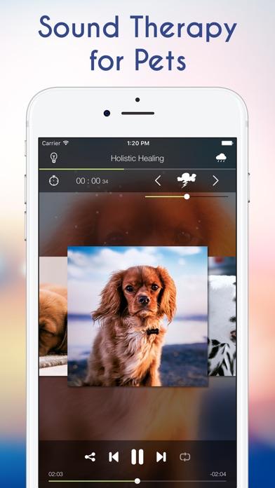 犬の不安とペットの治療のための静かな音楽 screenshot1