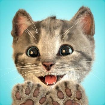 Little Kitten - My Favorite Ca... app for iphone
