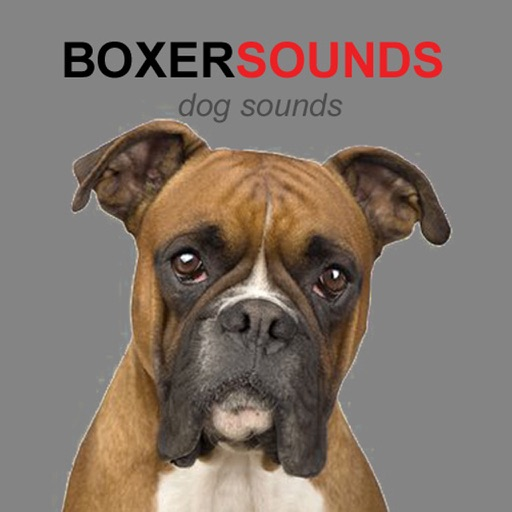 Audio Sounds Of Dogs Barking