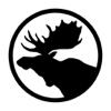 Continuum Inc - Moose Lodge #11 artwork