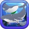 クジラの音