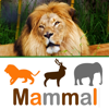 Tip Tap learn animal classes Wiki