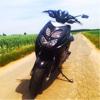 Black White Pearl Rox