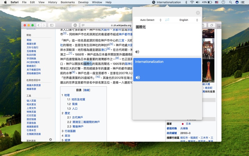 Translator Screenshot - 2