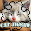 cat magic jigsaw puzzles