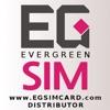 EG SIM CARD (EGSIMCARD)