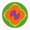 Салон Планета Цветов Wiki