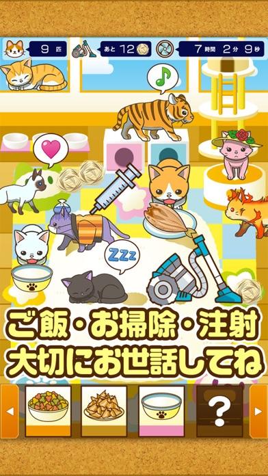 ねこカフェ~猫を育てる楽しい育成ゲーム~のスクリーンショット2