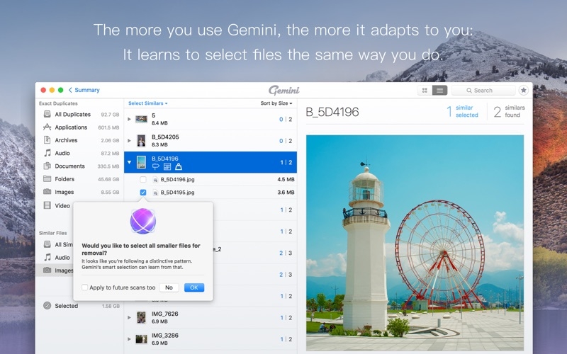 Gemini 2: The Duplicate Finder Screenshots