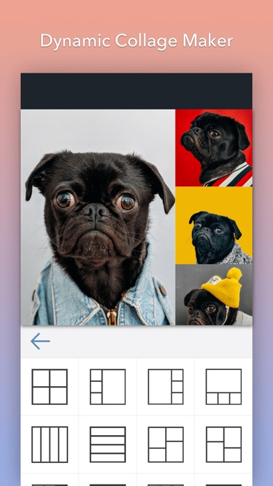 BeFunky Pro Screenshots