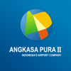 Indonesia Airports