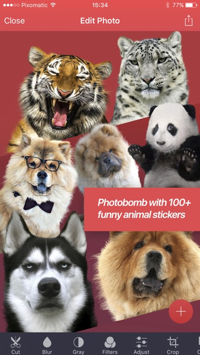 Pixomatic photo editor Screenshots