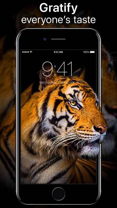 download Live Wallpapers Now apps 1