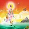 天天佛教音樂 ~ 淨化心靈