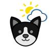 Panda Puppy Weather