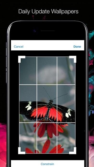 Cool Wallpapers Maker review screenshots