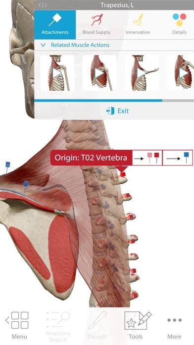 Human Anatomy Atlas 2018 Screenshots